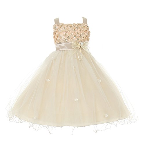 Little Girls Champagne Ribbon Tulle Satin Special Occasion Dress 6