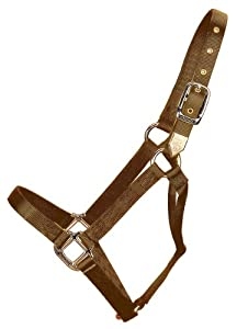 Hamilton 3/4-Inch Nylon Horse Halter, 200-300-Pound Weanling, Brown