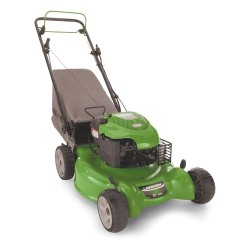 Lawn Boy 10642 20-Inch 6.75-Gross-Torque Gas-Powered Lawn Mower