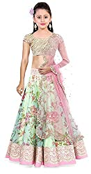 Clickedia Kids wear Girls Pink and Green Net Lehenga Choli/ Chaniya Choli for Festive Diwali and wedding - traditional wear ( 8-12 yrs)- Semi-Stitched alterable