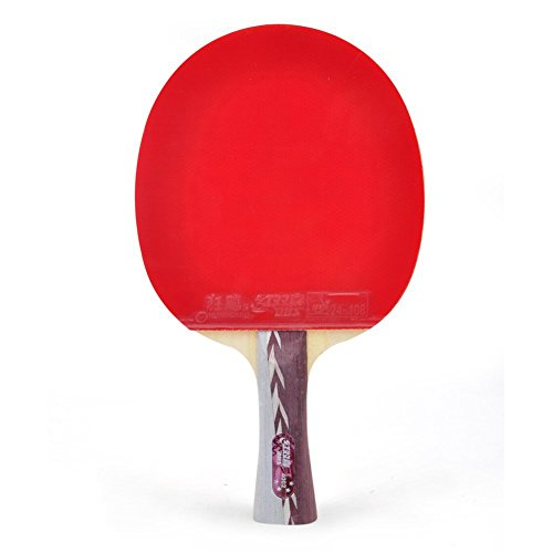 DHS Table Tennis Racket R4002, Ping Pong Paddle, Table Tennis Racquets - Shakehand World Champion (4 Star Ping Pong Balls Champion compare prices)