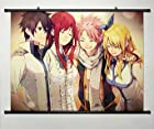Home Decor Anime Fairy Tail Cosplay Wall Scroll Poster Fabric Painting Key Roles 23.6 X 17.7 Inches-214