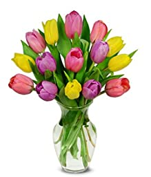 From You Flowers - Sweetheart Tulip Bouquet - 15 Stems (Free Vase Included)