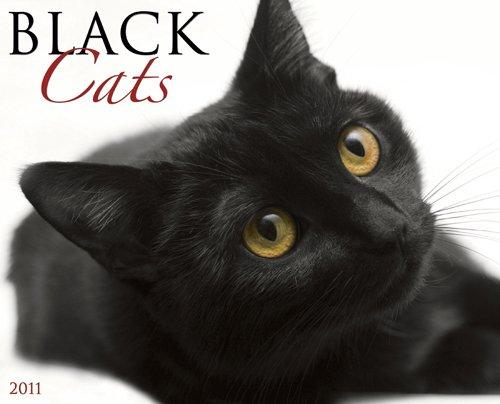Black Cats 2011 Wall Calendar
