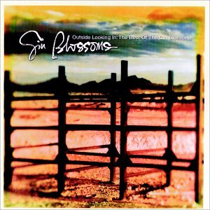 Gin Blossoms - Radio Waves of the