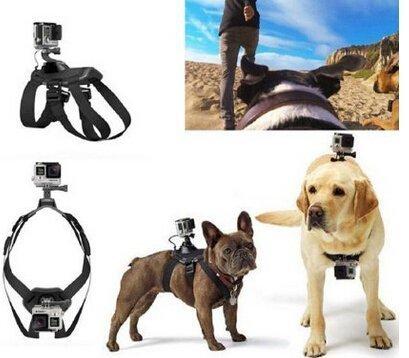 DDN Adjustable Hound Dog Fetch Harness Chest Strap Belt Mount For GoPro Hero 4 3+ 3 2 Camera