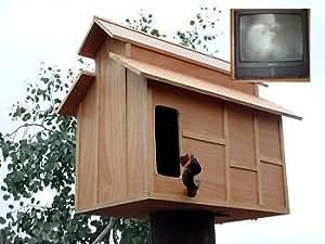 Amazon.com : Hoo's Hoo Barn Owl Nest Box : Bird Houses ...