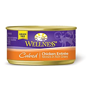 Wellness Cubed Canned Cuts Chicken Adult Canned Cat Food. 5.5 oz.
