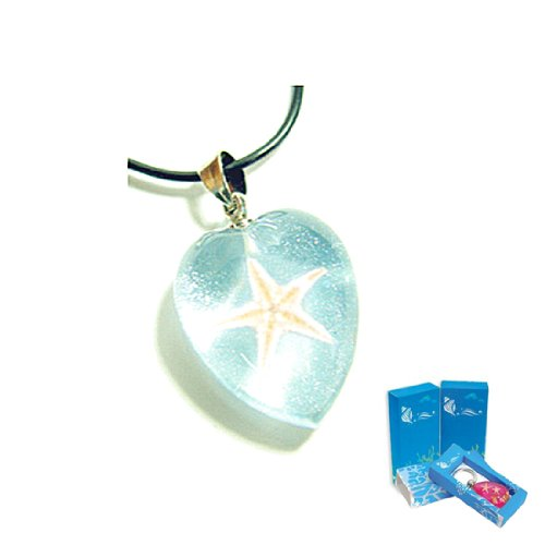 Star Fish Necklace (Real Insect Company Necklace compare prices)