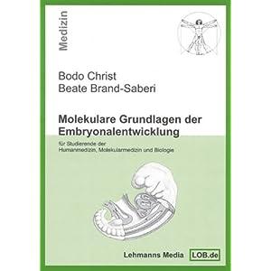 Molekulare Grundlagen der Embryonalentwicklung: Für Studierende der Humanmedizin, Molekul