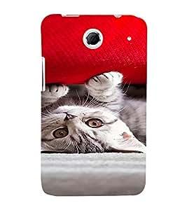 PrintVisa Cute Kitty Design 3D Hard Polycarbonate Designer Back Case Cover for Lenovo K880