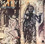 Here, My Dear Marvin Gaye