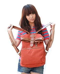 Ushoppingcart Canvas Backpack School Bag Stripe for School Laptop Bag Waterproof (Vintage Red)