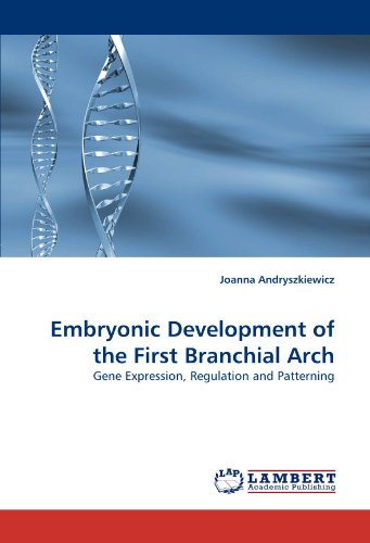 Embryonic Development of the First Branchial Arch: Gene Expression, Regulation and Patterning PDF