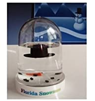 The Original Florida Melted Snowman s…