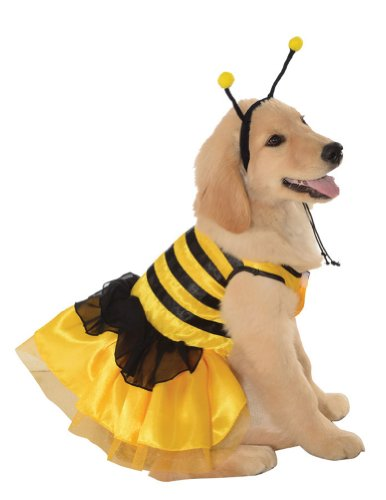 Cat & Dog Costume Baby Bumblebee Large