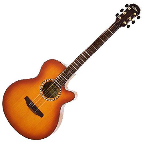 ARIA アリア アコースティックギター サイドバックタイガーウッド仕様 ライトヴィンテージサンバースト ソフトケース付 TG-1      LVS