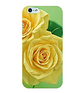 YELLOW BLOOMING ROSE DEPECTING NATURE 3D Hard Polycarbonate Designer Back Case Cover for Apple iPhone 6Plus