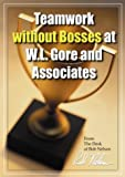 Teamwork without Bosses at W.L. Gore and Associates
