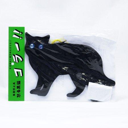 怒る黒猫コラー!! -