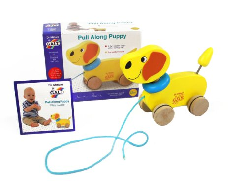 Galt Toys Inc Dr Miriam Pull Along Puppy Toy