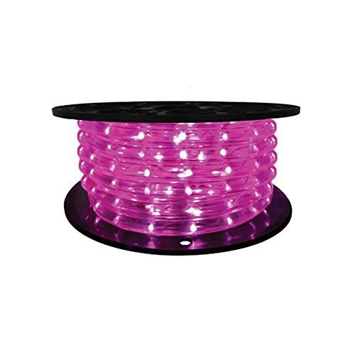 "Brilliant Brand Lighting Seasonal Decoration Purple Brilliant Brandled Rope Light 1/2"" 2-Wire 120-Volt 65' Spool (Vertical)"