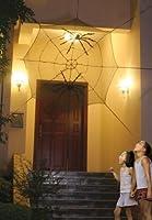 Seasons 6' Spiders Web from Seasons