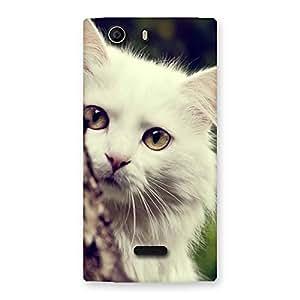 Premium Cat Hide Back Case Cover for Canvas Nitro 2 E311