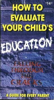 how-to-evaluate-your-childs-education-falling-through-the-cracks-a-guide-for-every-parent