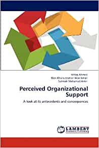 Perceived Organizational Support