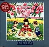 Mr. E's Beautiful Blues (disc 2) - Eels