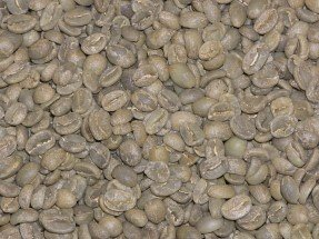 Java Estate Green Coffee Beans - 5Lbs