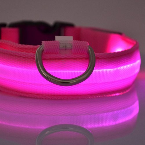 perro-de-nylon-azul-led-nocturna-de-seguridad-collar-intermitente-correa-del-light-up-pink