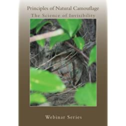 Principles of Natural Camouflage