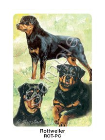 Best Friends Playing Cards, by Ruth Maystead - Rottweiler