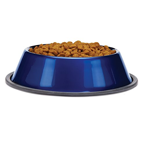 proselect-stainless-steel-dura-gloss-metallic-dog-bowl-16-ounce-sapphire
