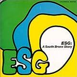 ESG A South Bronx Story