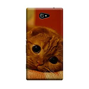iShell Premium Printed Mobile Back Case Cover With Full protection For Sony Xperia M2 (Designer Case)