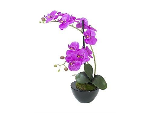 europalms-arrangement-dorchidees-dans-un-pot-decoratif-plante-artificielle