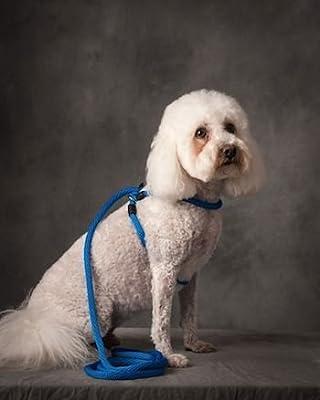 Harness Lead No Pull No Escape Dog Harness