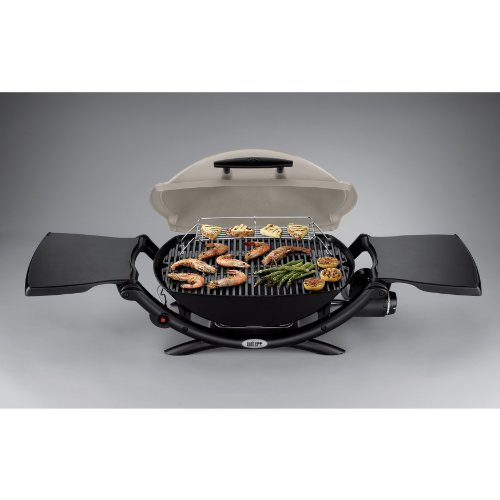 weber 53060001 q2000 liquid propane grill best prices. Black Bedroom Furniture Sets. Home Design Ideas