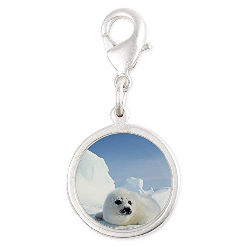 Silver Round Charm Harp Seal (Wet Seal Bracelet compare prices)