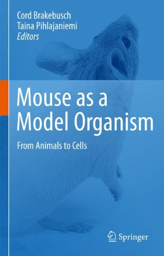 Mouse As A Model Organism: From Animals To Cells