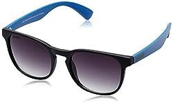 MTV Roadies Wayfarer Sunglass (Matte Black and Blue) (RD-115-C3)