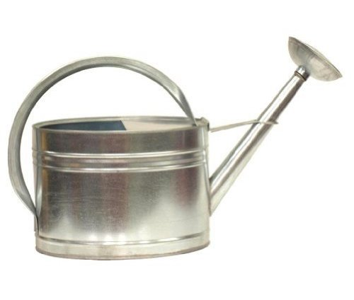 Black friday houston international 8584 2 gallon steel watering can silver cyber monday sale - Gallon metal watering can ...