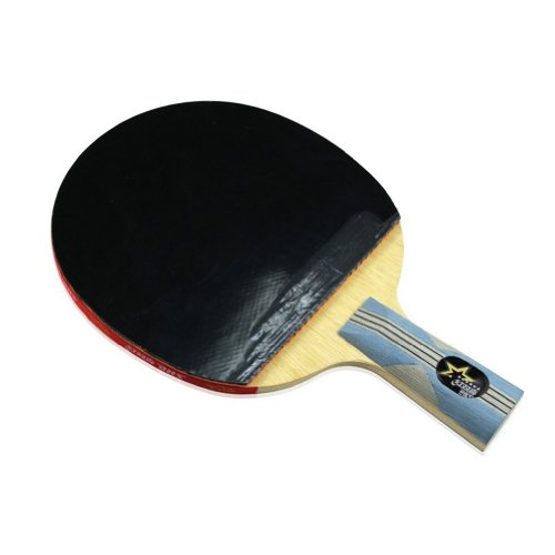 DHS Table Tennis Racket X6007, Ping Pong Paddle Penhold
