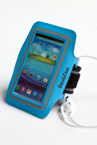 Dandycase Non-Slip Protective Gym Jogging Sports Armband Case Cover For Htc One (Also Fits One X, One X+) (Blue)
