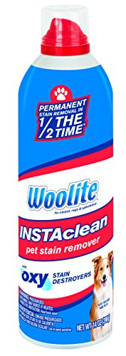 woolite-instaclean-pet-stain-remover-1783