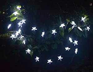 Hanging String Lights Without Trees : LED Star Lights String - Large White Star Shaped Covers - Solar Energy Battery Operated - Light ...