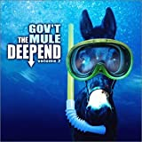 The Deep End, Vol. 2 ~ Gov't Mule